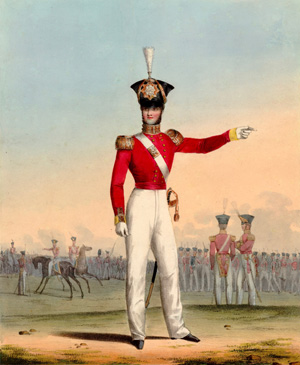 Officer of the 15th (The Yorkshire East Riding) Regiment