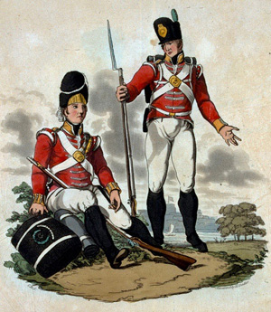 Grenadiers & Light Infantry of the 29th (Worcestershire) Regiment of Infantry, by Charles Hamilton Smith